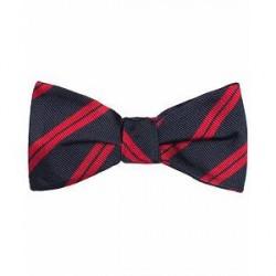 Amanda Christensen Stripe Self Tie Silk Navy/Red