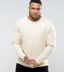 Another Influence PLUS Basic Raw Edge Long Sleeve Top - Stone