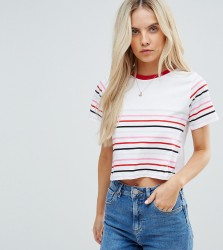 ASOS PETITE Exclusive Crop Top in Cutabout Stripe - Multi