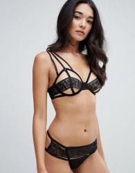 Bluebella Portia String Lace Thong - Black