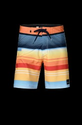 Boardshorts Everyday Stripe Vee