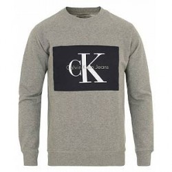 Calvin Klein Jeans Hotoro Sweatshirt Light Grey