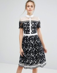 Chi Chi London Premium Lace Panelled Dress With Contrast Collar - Black