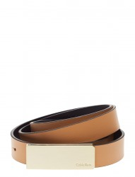 Curved Plaque Belt 2