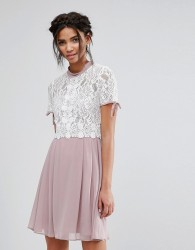 Elise Ryan Skater Dress With Corded Lace Upper - Multi