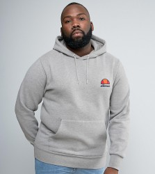 Ellesse PLUS Hoodie With Small Logo - Grey