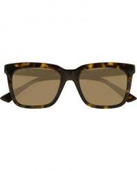 Gucci GG0267S Sunglasses Havana men One size Brun