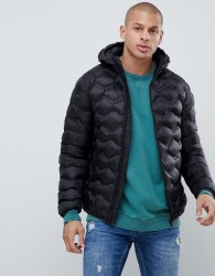 Gym King hooded puffer jacket in black with bubble quilting - Black