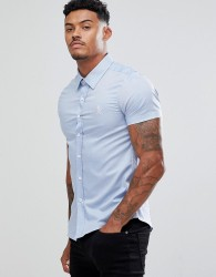 Gym King Muscle Shirt In Blue - Blue