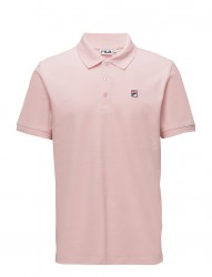 Jared Polo Ss
