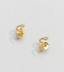 Kingsley Ryan Sterling Silver Gold Plated Snake Stud Earrings - Gold