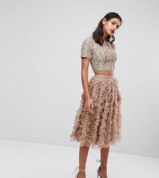 Lace & Beads Tulle Midi Skirt With 3D Shirring Detail - Brown