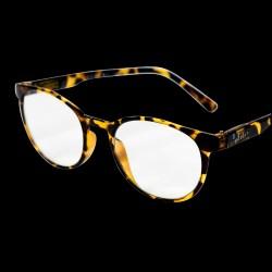 Læsebriller +2.5 Bastia Turtle