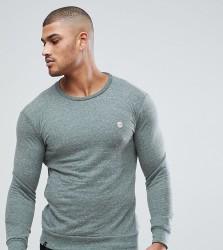 Le Breve Tall Sweatshirt - Green