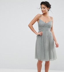 Little Mistress Petite All Over Tulle Prom Skater Dress With Corset Detail - Green