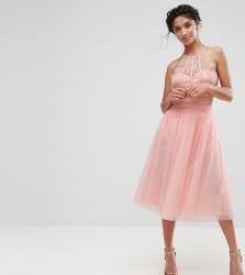 Little Mistress Petite Waisted Tulle Prom Skirt - Pink