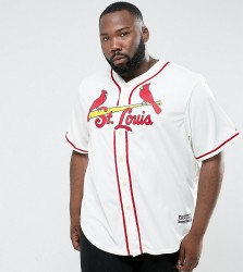 Majestic PLUS MLB ST. Louis Cardinals Baseball Replica Jersey In Off White - White