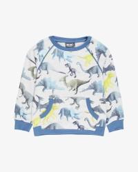 Me Too LS sweatshirt