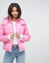 Miss Selfridge Padded Jacket - Multi