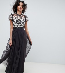 Needle & Thread embroidered bodice tulle maxi dress in graphite - Multi
