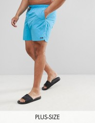 North 56.4 Plus Swim Short In Blue - Blue