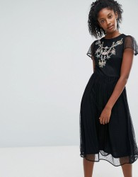 Oasis Embroidered Mesh Skater Dress - Black