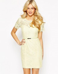 Oasis Lace Shift Dress - Green