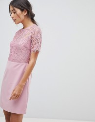 Oasis Lace Sleeved Shift Dress - Purple