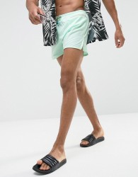 Oiler & Boiler East Hampton Shortie Swim Shorts In Green - Green