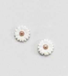 Olivia Burton Sterling Silver Daisy Stud Earrings - Gold