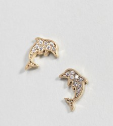Orelia Gold Plated Crystal Dolphin Stud Earrings - Gold
