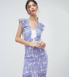 Paper Dolls Petite Allover Applique Lace Pencil Dress - Blue