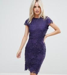 Paper Dolls Petite Cap Sleeve Lace Dress - Purple