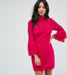 Paper Dolls Petite High Neck Crochet Mini Dress with Frill Sleeve - Pink