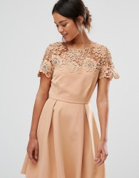 Paper Dolls Petite Prom Dress With Tonal Lace Overlay - Tan