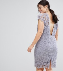 Paper Dolls Plus Midi Lace Dress with Scalloped Back - Grey