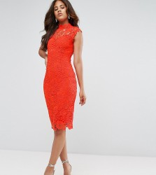 Paper Dolls Tall High Neck Crochet Lace Pencil Dress - Orange