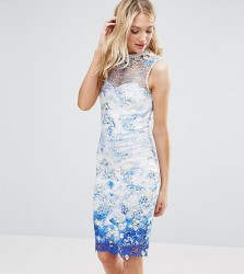 Paper Dolls Tall High Neck Printed Lace Pencil Dress - Multi