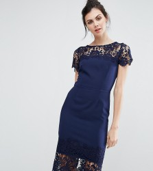Paper Dolls Tall Lace Contrast Midi Ribbed Pencil Dress With Belt - Navy