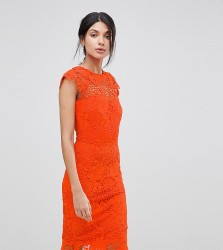 Paper Dolls Tall Lace Dress With Scalloped Back - Orange