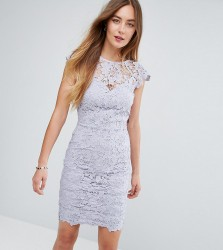 Paper Dolls Tall Mini Lace Dress with Scalloped Back - Grey