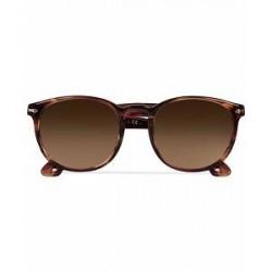 Persol 0PO3157S Round Sunglasses Brown/Violet Tortoise