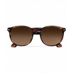 Persol 0PO3157S Round Sunglasses Brown/Violet Tortoise
