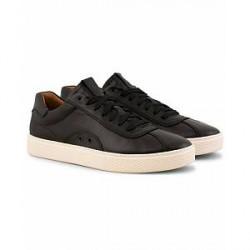 Polo Ralph Lauren Court 100 Lux Sneaker Black