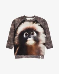 Popupshop Monkey sweatshirt