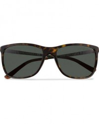Ralph Lauren Eyewear Ralph Lauren 0RL8133Q Sunglasses Dark Havana/Green men One size Brun,Grøn