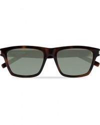 Saint Laurent SL 274 Sunglasses Havana/Brown men One size Brun