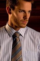 Scandinavian Prestige Skjorte - Afdæmpede striber (1 stk)