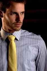 Scandinavian Prestige Skjorte - Grå med orange nålestriber (1 stk)