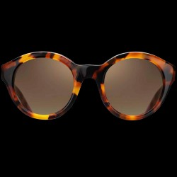 Solbriller Havana Grace